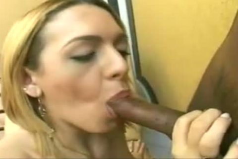 Sugar TS chick For black penis